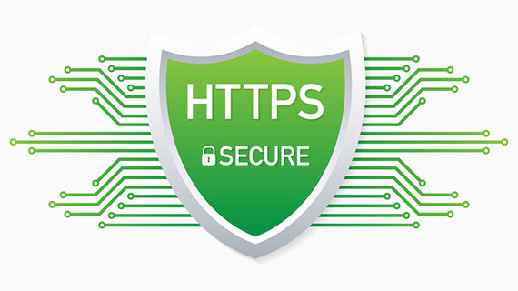 Where to Find the Authentic SSL Certificate
