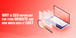 Why is SEO important for your website and how much does it cost